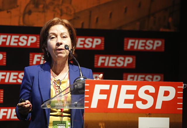 Ieda: necessidade de mais integração na América Latina. Foto: Everton Amaro/Fiesp