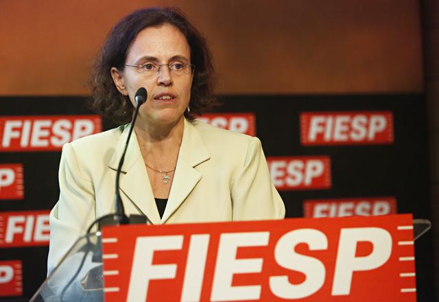 Silvie: ainda faltam condições de investimento. Foto: Everton Amaro/Fiesp